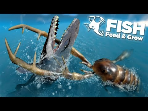 How to download feed and grow for free on windows 7 8 10 for Feed and grow fish free no download