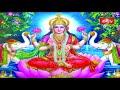 జ్ఞానం - ఐశ్వర్యం - ఆనందం ఈ మూడు జీవితంలో ఎప్పుడు కలుగుతాయి..? | Sri Samavedam Shanmukha Sarma