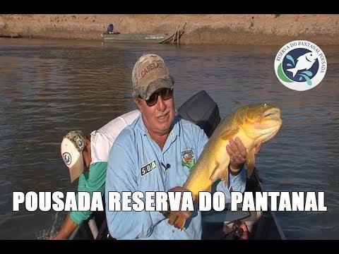 Caminhos do Brasil /2