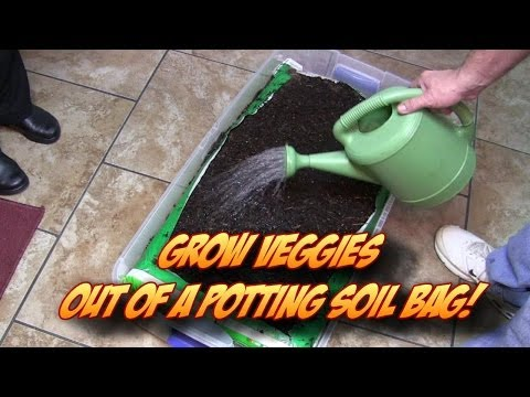 Growing Veggetables Straight Out Of A Potting Soil Bag!  Indoors Or Outdoors - Smashpipe People