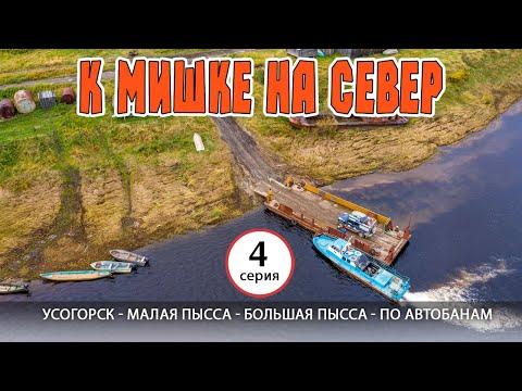 Усогорск - Малая Пысса - Большая Пысса - по лесным автобанам. К Мишке на север - 4 серия.
