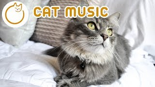 Relax Your Cat - 6 HOURS of Soothing Music for Felines 🎼