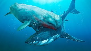 6 Most Dangerous Megalodon Enemies Ever Existed