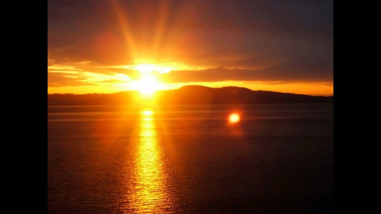 Image Result For Suns