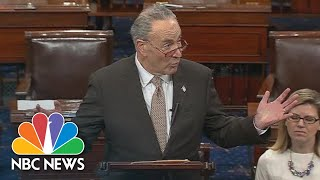 Chuck Schumer: We Tried To 'Untie The Knots In Logic' At President Donald Trump Meeting | NBC News