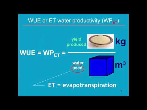 Water productivity AquaCrop - Training module Nr. 4.7, April 2016