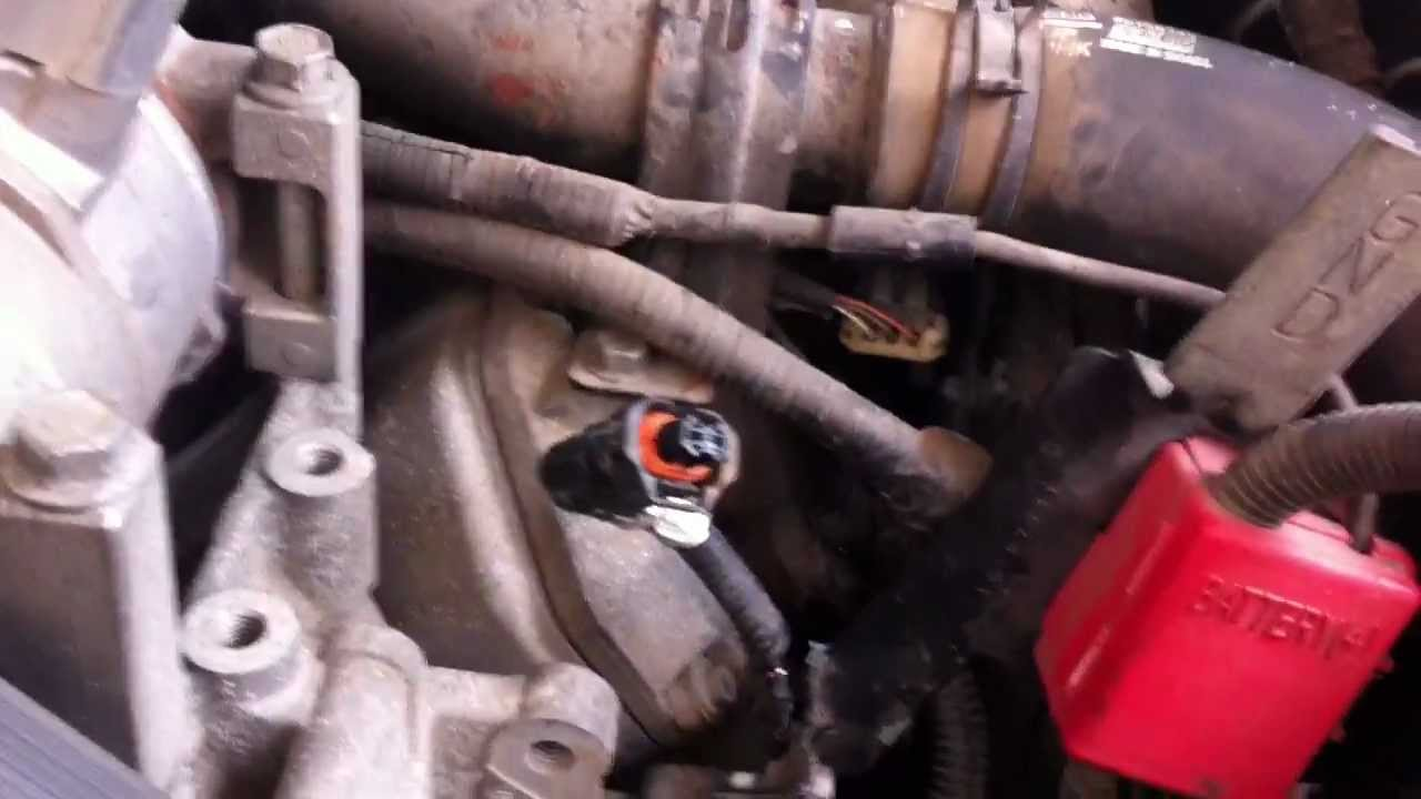 Lly Wiring Harness Daily Update Diagram Duramax 2004 Injector Wire Get Free Engine