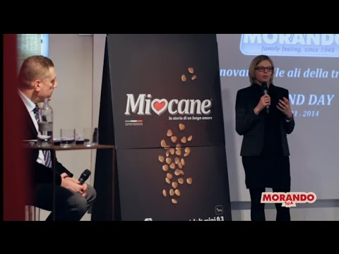 video evento miocane miogatto YouTube HQ 16:9 1080 HD