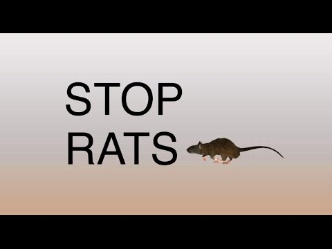 How to control rodents - in English
