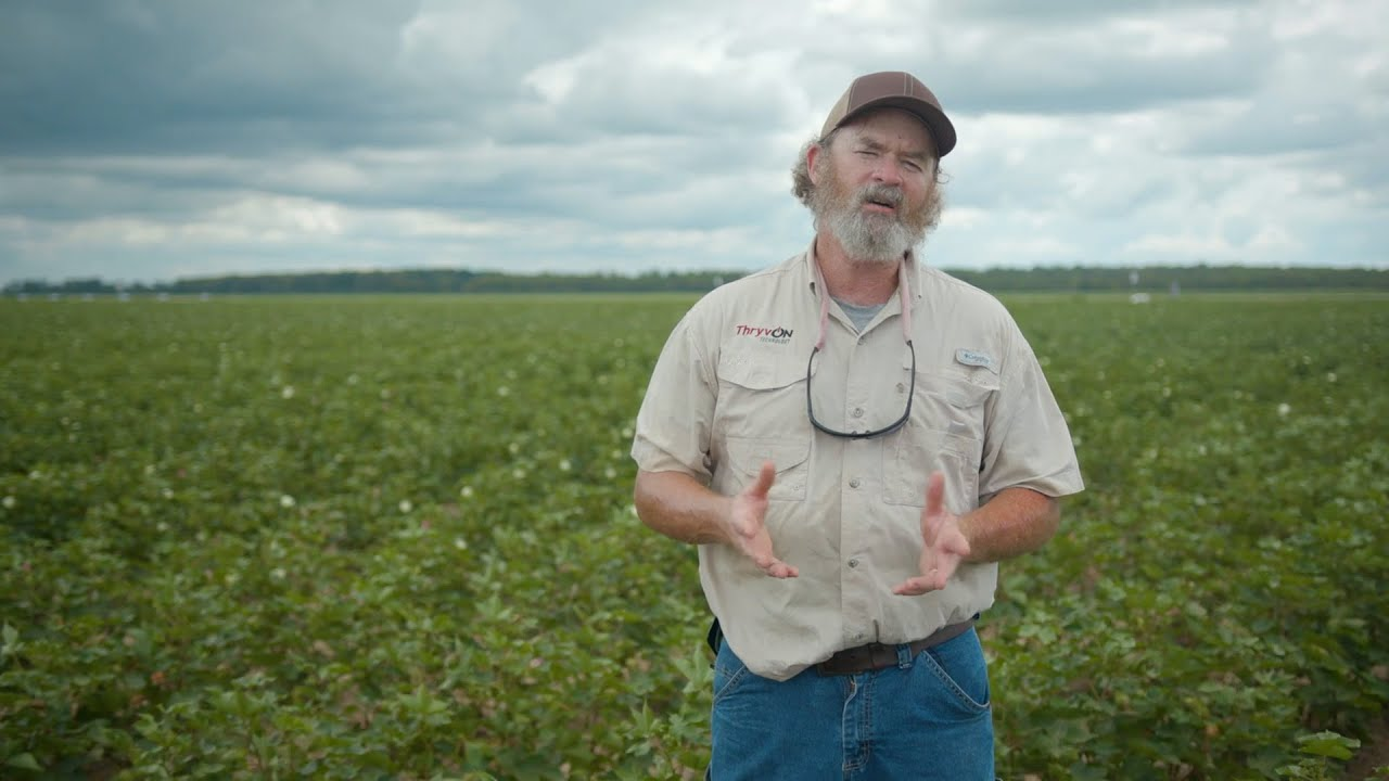 Video 15: The Future of Cotton Is Coming
