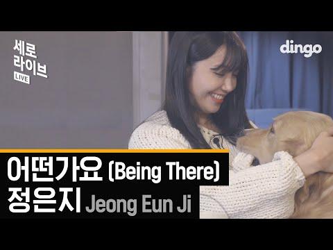 정은지 - 어떤가요 (Jeong Eun Ji - Being There) [세로라이브 / 4K] 댕댕이와 함께한 LIVE