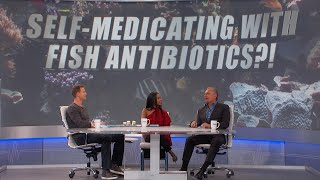 Self-Medicating with Fish Antibiotics? -