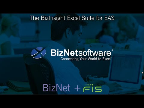 The BizInsight Excel Suite for EAS