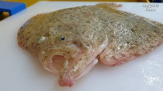 How to fillet a fish Turbot[korean street food]