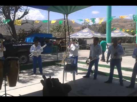 Baixar Banda Cerro Grande - Tecateando