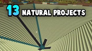 13 Natural MEGA Projects For Your Minecraft World