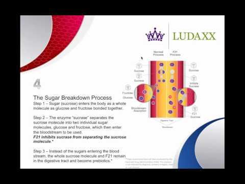 Ludaxx Product Webinar 2-26-13