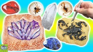 MEGA Dig It Bars! Huge Gemstone Bar & Creepy Bugs Dig Bar! Doctor Squish