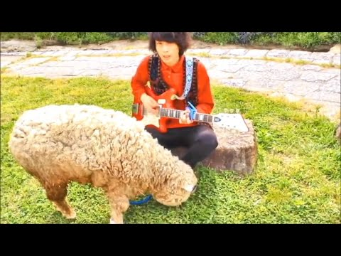 meh meh white sheeps「ひつじのフォーク」MV