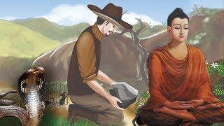 ÁC GIẢ THÌ ÁC BÁO Luật Nhân Quả Có Rồi | Chuyện Phật Giáo Nhân Quả Hay Nhất
