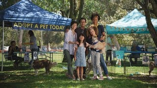 Subaru Share the Love Event | Subaru Commercial | Rescue More Pets