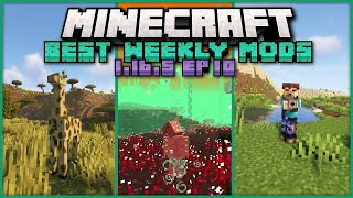 Top 22 New Mods for Minecraft 1.16.5 on Forge & Fabric Released This Week