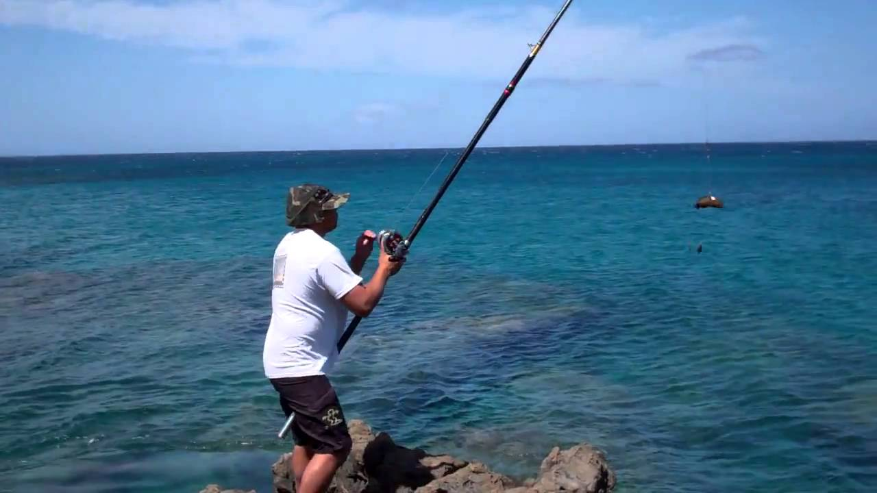 Ulua Omilu Bait Casting On The Big Island Youtube