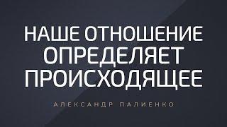 Наше отношение определяет происходящее. Александр Палиенко.
