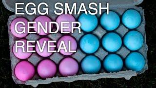 Baby Pierson Gender Reveal - Egg Smash!