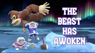 Best ICE CLIMBERS Players in Smash Ultimate Competitive
