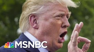 What A 2017 Column On Deportation Can Teach Us Now | Morning Joe | MSNBC