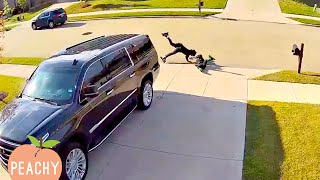 😁 UNEXPECTED Fails CAUGHT on Security Camera | Funny Fails | FUNNY MOMENTS 😂