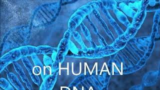 Trailer 2019 The Ancient secret teachings human dna is connected to everything