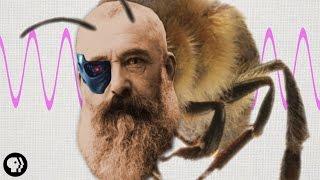 Claude Monet Was Half Honeybee