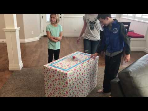 Christmas Puppy Surprise leaves kids in tears