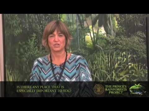 Rainforest Alliance's Tensie Whelan discusses rainforests and ...
