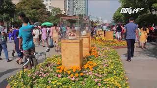 VTC14 |  Đường hoa Nguyễn Huệ tết mậu tuất bắt đầu từ 13/2/2018