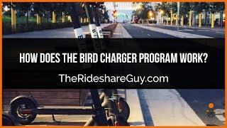 How Does The Bird Charger Program Work? Charging Electric Scooters (Review)