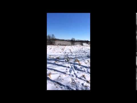 5 Acres For Sale in MN | XXX 110th Street Sauk Centre, MN 56378 | Aspire Realty of Little Falls