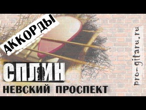Сплин - Невский проспект - Аккорды
