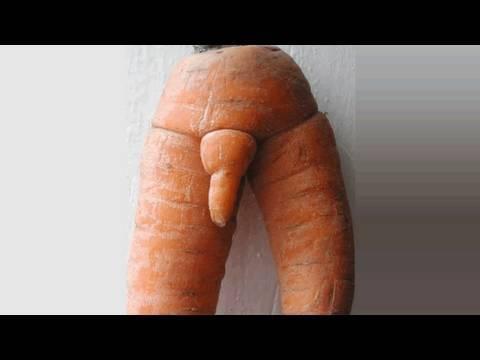 Penis Vegetable 11