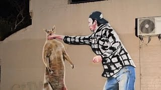 Man Who Punched Kangaroo That Stole His Dog Is Painted As Tribute Mural