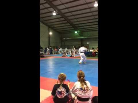 USA Taekwondo Member Demonstrates Sipjin