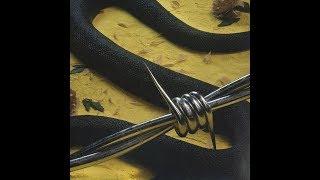 Rockstar (feat. 21 Savage) (Clean Radio Edit) (Audio) - Post Malone