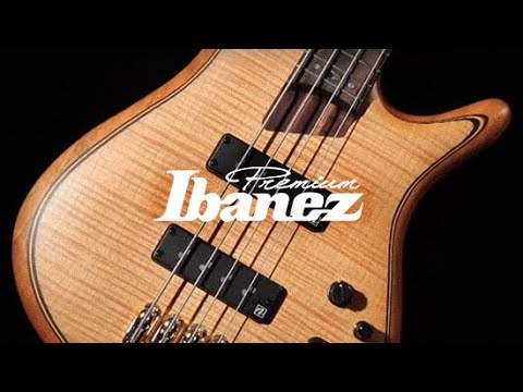 Ibanez SR1605 5 String Bass Guitar