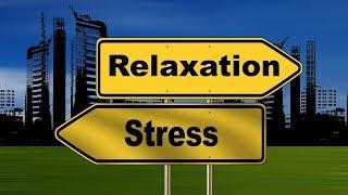 Serenity Calm Music For Study / Relaxing / Sleep / Meditation