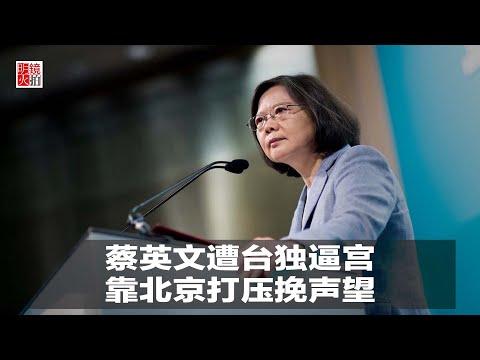 明镜连线|陈国祥:蔡英文遭公开信逼宫,靠北京打压挽声望(20190103)