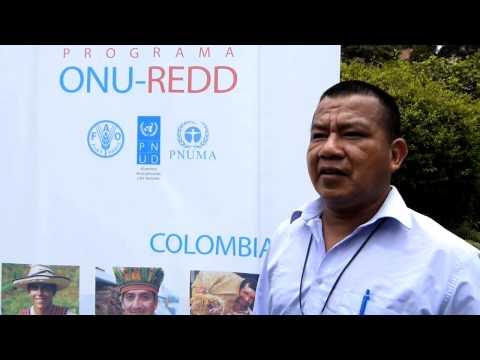 Participación de Pueblos Indígenas en el Taller de Arranque del Programa ONU-REDD Colombia