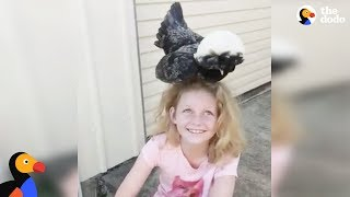 Girl With Autism Is A Chicken Whisperer   The Dodo