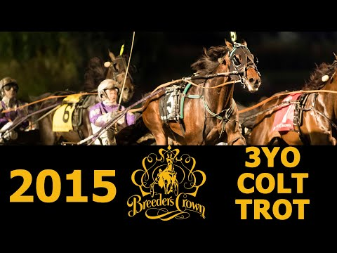 2015 Breeders' Crown Final